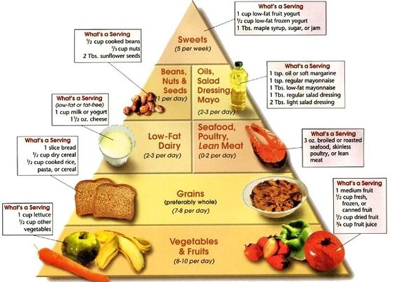 High Protein Food Pyramid FUNNY WALLPAPERS QUOTES